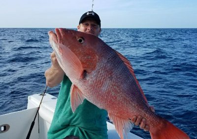 redsnapper